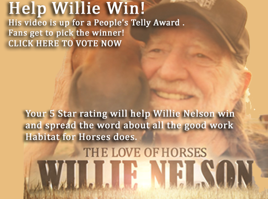 help willie win
