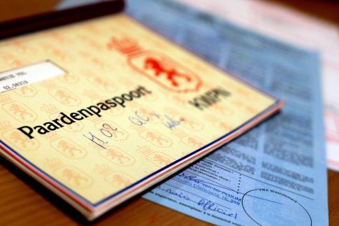 Danish European Horse Passport