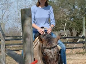 Horse Rescue 101
