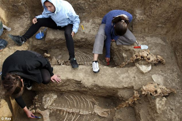 Archaeologists have uncovered the remains of a Thracian carriage and two horses that appear to have been buried upright