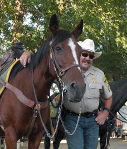 Abby police horse