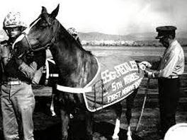 Sgt Reckless
