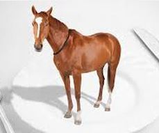 Horse meat scandal