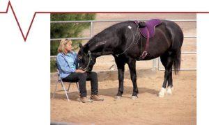 horsetherapy2