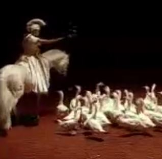 Zingaro Equestrian Theater
