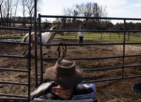 Troubled teens train horses