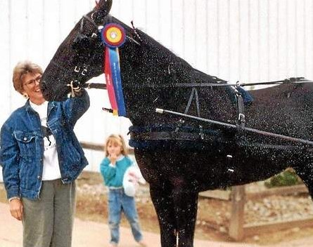 Ellen VanSlyke of Rose Township is pictured with her daughter, Noell, with their Tennessee Walking Horse National Champion, ìIron Z Camaroî in 1996. VanSlyke sees gaited horses gaining popularity in sporting endeavors including trail riding, driving and endurance. Photo submitted by Sharon Greene