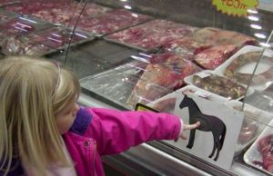 Americans do not want to eat horsemeat