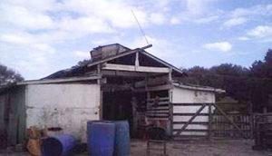Jorge Ortega's slaughter house