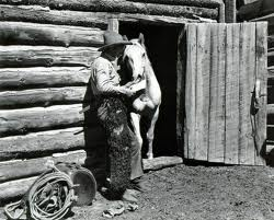 Cowboy reading love letters to his horse