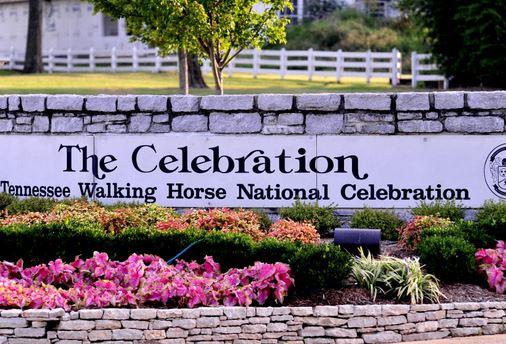 Tennessee Walking Horse National Celebration