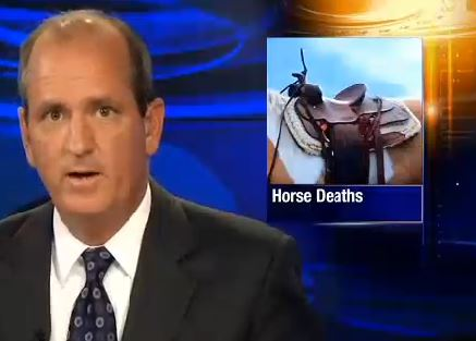 mini-horse deaths by dogs