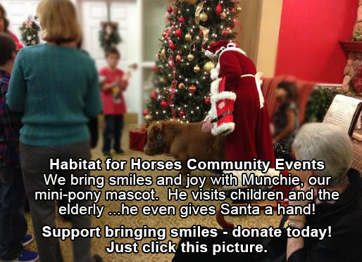munchie with Santa - support habitat for horses