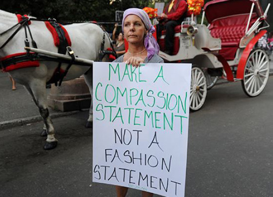 NYC carriage horse protest