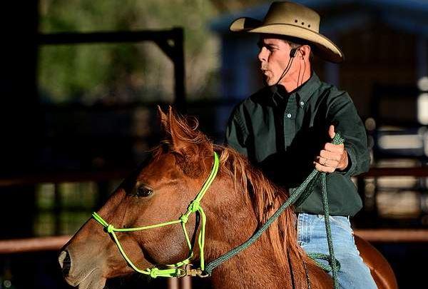 Rhett Fincher horse whisperer trainer
