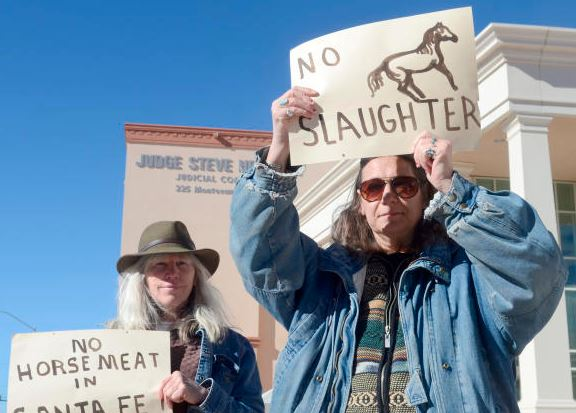 protest against horse slaughter