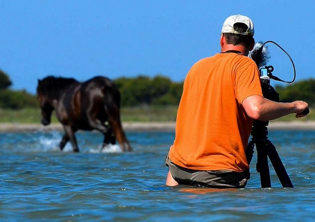 Outer Banks horses documentary