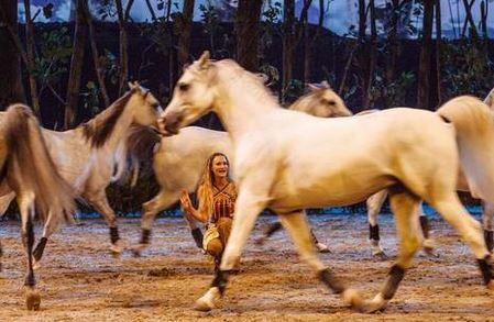 Cavalia Odysseo Equestrian Show