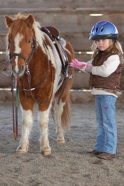 pony and girl with safety helmet
