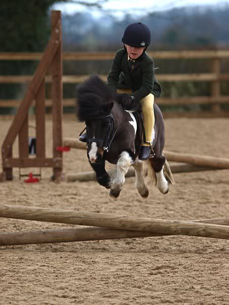 pony and girl jumping