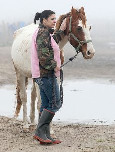 Heather Whitmire, with Habitat for Horses, waits with one of 28 horses seized Wednesday in Jamaica Beach.