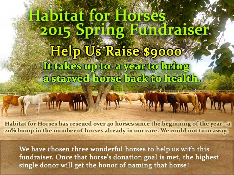 fundraiser3