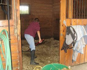 mucking a stall