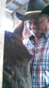 jobe and smokey donkey ranch