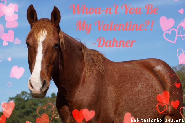dahner valentine