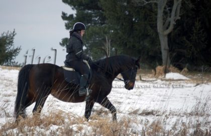 riding-in-snow